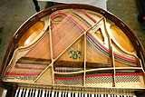 Wurlitzer Butterfly baby grand piano inside view